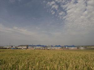 bioplynovy-park-2.jpg, 54kB